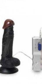 Riding Roy Zenci Realistik Penis