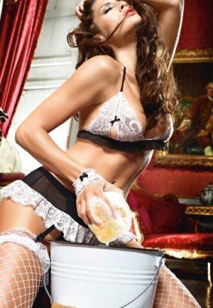 Siyah Beyaz Seksi Fransız Hizmetçi Kostümü