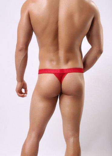 Seksi Dantel Şeffaf Külot Bikini G-String