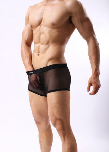 Siyah Transparan Erkek Boxer | 0545 356 96 07