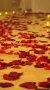 Romantik Gül Yaprakları